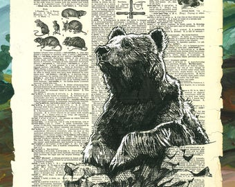 Bear Witness - Woodland Grizzly Illustration - Museum Quality Giclée Print