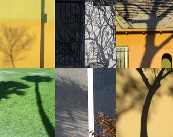 Shadows Trees 1, Photograph, Poster, Colorful, Architecture, Los Angeles, Popart, Art Print, Graphic, Collage, Street