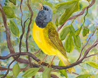 Mourning Warbler, Bird, Nature, Songbird, Fine Art, Giclee Nature Print, Home Decor, Christmas Gift