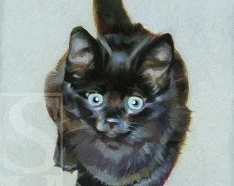 Black Kitten Original Oil Painting by Susan Van Sant 5x7 cat art portrait