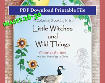 Adult Coloring Pages, PDF Printable Download, Numbers 26-30,  5 for 5 Dollars, Little Witches and Wild Things, Fantasy Coloring Art