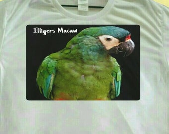 Illiger's Illigers Macaw Parrot Print Polyester White T-shirt Tee