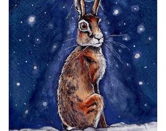 Winter Star Hare (A5 print)