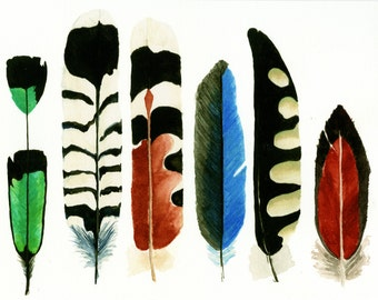 """Feather Watercolor Print-""""The Nunez"""" print, 6 feathers,Native American Art, Wall Art, Housewares, Fine Art, Feather Painting,"""