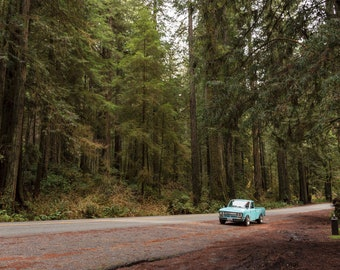 Minitruck in the Redwoods, Landscape Photography, Metal Print, Large Prints, Humboldt County CA, Classic Cars, Sunsets, DJerniganPhoto