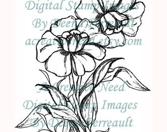 INSTANT DOWNLOAD Digital Stamp Image DAFFODILS