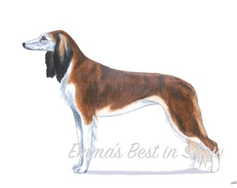 Saluki Dog - Archival Fine Art Print - AKC Best in Show Champion - Breed Standard - Hound Group - Original Art Print