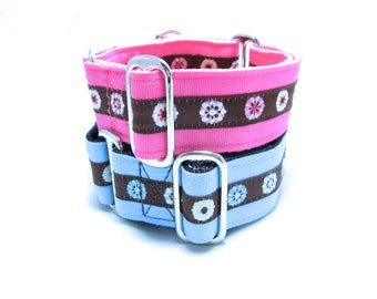 """Houndstown 1.5"""" Daisy Stripe Martingale or Buckle Collar Size Small through X-Large"""