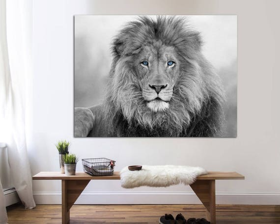 Black And White Blue Eyed Lion Canvas Print Interior