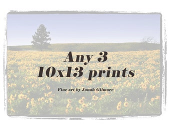 10 x 13 Fine Art Print Trio from Jonah Gilmore - Choose Any 3 Prints for the price of 2