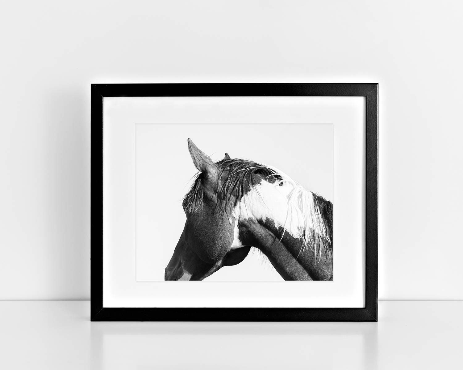 Modern horse photography paint horse in black and white zoom jeuxipadfo Gallery