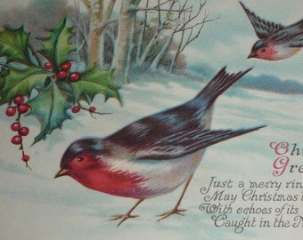 Birds, Snow, Tree and Holly Antique Christmas Postcard UNUSED