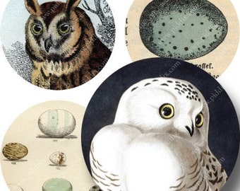 Bottle Cap Images, 1 inch Round, Bird and Owl 1-inch Circles, Digital Vintage Circles, 4x6 inch sheet, piddix digital collage sheet 1054