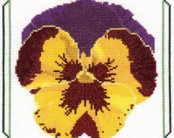 The Pansy--LB02180