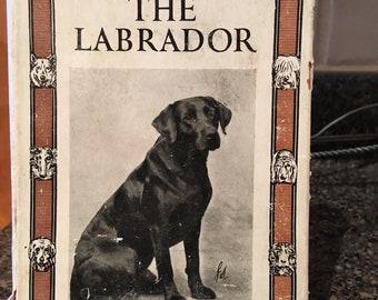 "Vintage Dog Book ""Our Friend the Labrador"" UK 1952"