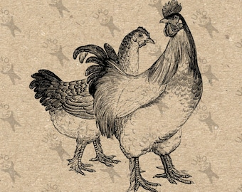 Antique image Hen and Rooster Chicken Instant Download Digital printable vintage clipart graphic scrapbooking, burlap, decor  etc HQ 300dpi