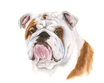 WATERCOLOR BULLDOG PRINT - Bulldog Painting, English Bulldog, Georgia Bulldog, Yale, Uga, Handsome Dan