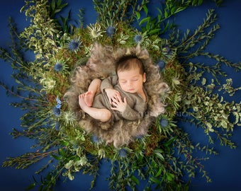 Newborn Digital Backdrop for boys - Natural Nest on a Navy Blue Background