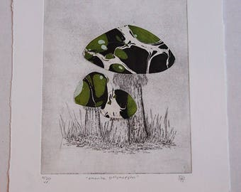 Mushroom Chine Colle Etching: Green Marble