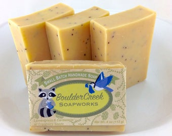 Lemongrass & Cardamom with Cranberry Seeds-Cold Process Soap Batch #274
