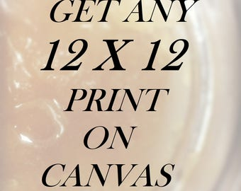 Canvas Gallery Wrap - Any 12x12 Print on a Canvas