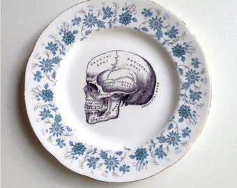 Vintage Anatomical Skull Plate Altered Art gothic