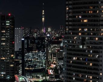 Tokyo SkyTree Photograph, Tokyo, Japan, Japanese, Cityscape photo, travel photography, wall art, decoration
