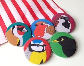 Bird Badges, British Garden Bird Badges, bird buttons, bird pins, blue tit, sparrow, robin, goldfinch, black bird, fun stocking fillers