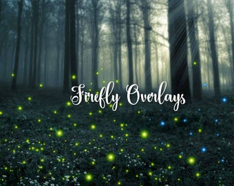 Firefly overlays, digital photography overlays, png magic wedding lights, green, pink, blue, purple floating fairy lights, instant download