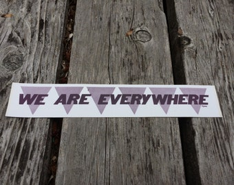 WE ARE EVERYWHERE, Vintage Lesbian Feminist Bumper Sticker