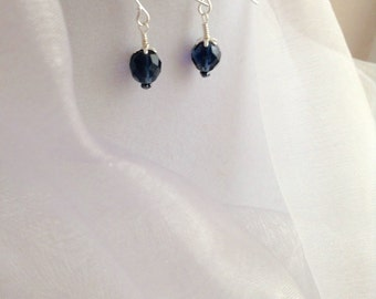 Montana Blue Crystal and Silver Dangle Earrings