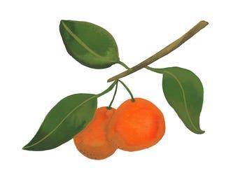 Orange You Glad // Fine Art Print