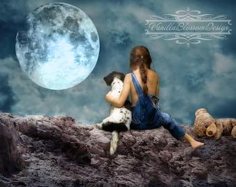 Moonlight teddy bear  digital background backdrop photography