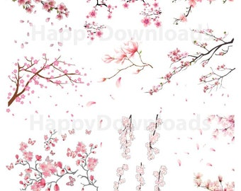 Blossom Tree Branch Sakura Petals Flower Cherry Pack Graphic Clipart PNG Digital Download