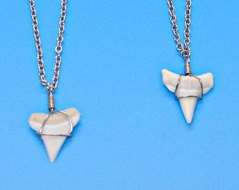 Shark Tooth Silver Chain Necklace Minimal Surfer Beach Jewelry Genuine White Modern Sharks Teeth