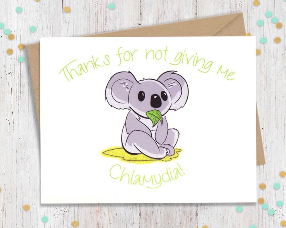 Chlamydia koala funny valentine funny valentines valentine zoom kristyandbryce Image collections