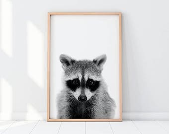 Raccoon Print, Raccoon Art, Black And White Animal Print, Black And White Animal Art, Raccoon Animal, Instant Download Art, Nursery Room