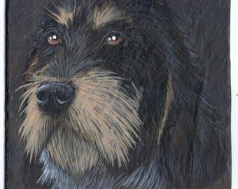 the griffon acrylic pet portrait