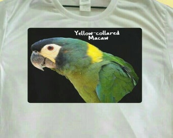 Yellow-collared Macaw Parrot Print Polyester White T-shirt Tee