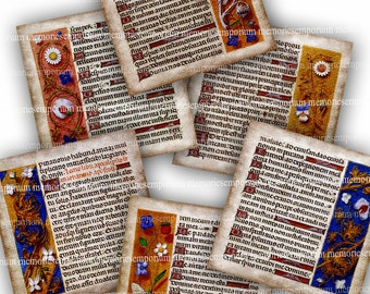 Renaissance Illuminated Book Pages Digital Paper Collage Sheet Latin Handwriting Calligraphy Decoupage Backgrounds Floral Painting 713
