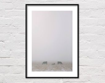 Foggy Pasture, Cow Print, Farm Print, Animal Prints, Fog, Ranch Photo, Winter Photography, Landscape, Rustic Decor, Farm Art, Cows, Wall Art
