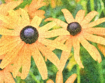 Yellow Daisies Photo | Photo Effects | Impressionist | Instant Download
