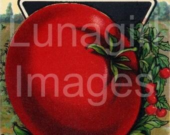 Antique SEED PACKS Vintage Images, 80 bright retro prints, vegetables herbs, gardening kitchen Art shabby Decor, digital ephemera DOWNLOAD