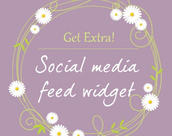 Social media feed widget installation for premade WordPress template