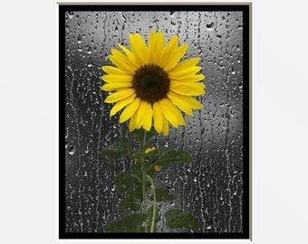 Sunflower Wall Art, Decorative Bathroom Decor, Yellow Wall Pictures, Yellow Sunflower Bedroom Bath Matted Wall Picture