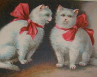 LAST CHANCE SALE Vintage Embossed Cat Postcard (Pink Ribbon)