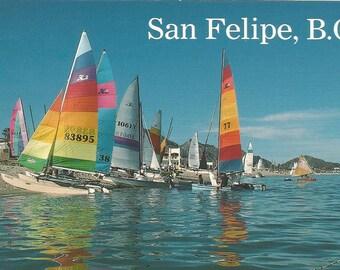 Vintage Postcard San Filipe Baja California Mexico Stunning Resort Sailboats New Arches Palm Trees Bougainvillea Photchrome Postally Unused