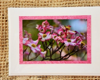 Pink Dogwood note card, 1
