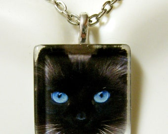 Black cat in the leaves pendant and chain - CGP01-083