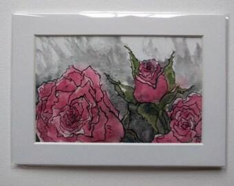 Rainy day roses